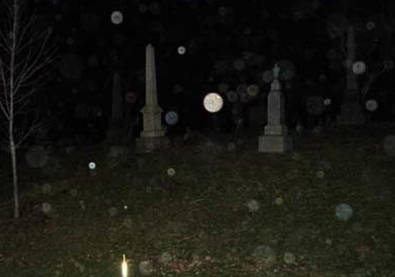 yellow orbs in photos