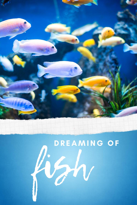 dreaming of fish
