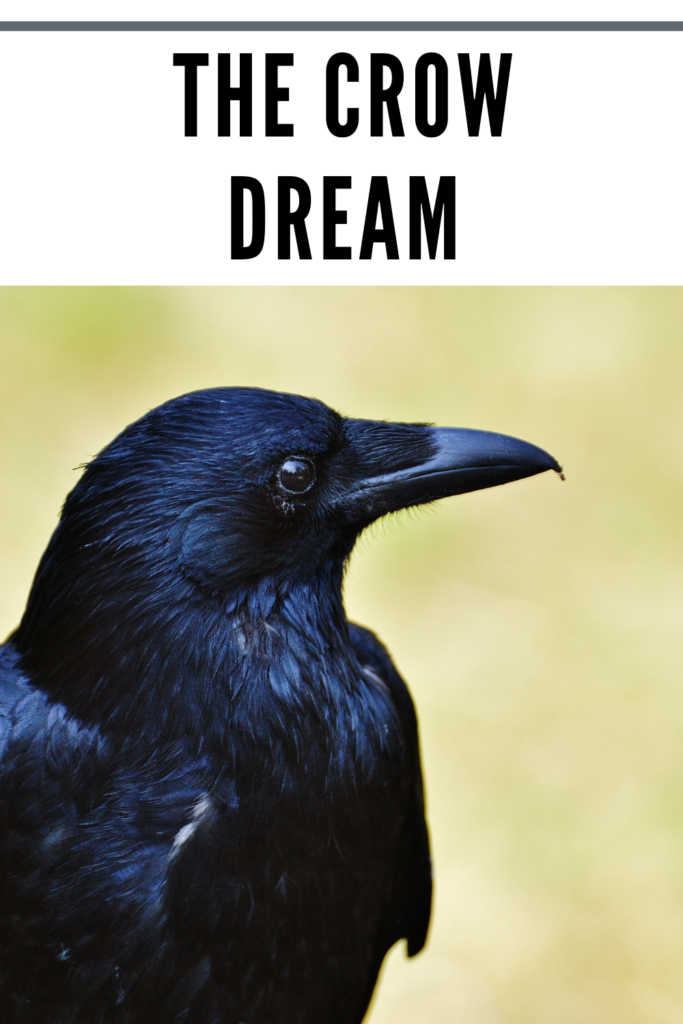 crow meaning