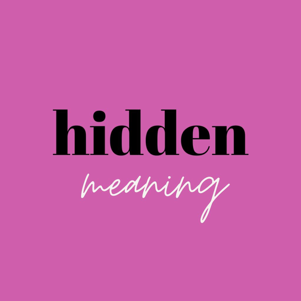 hidden meaning spirit guide