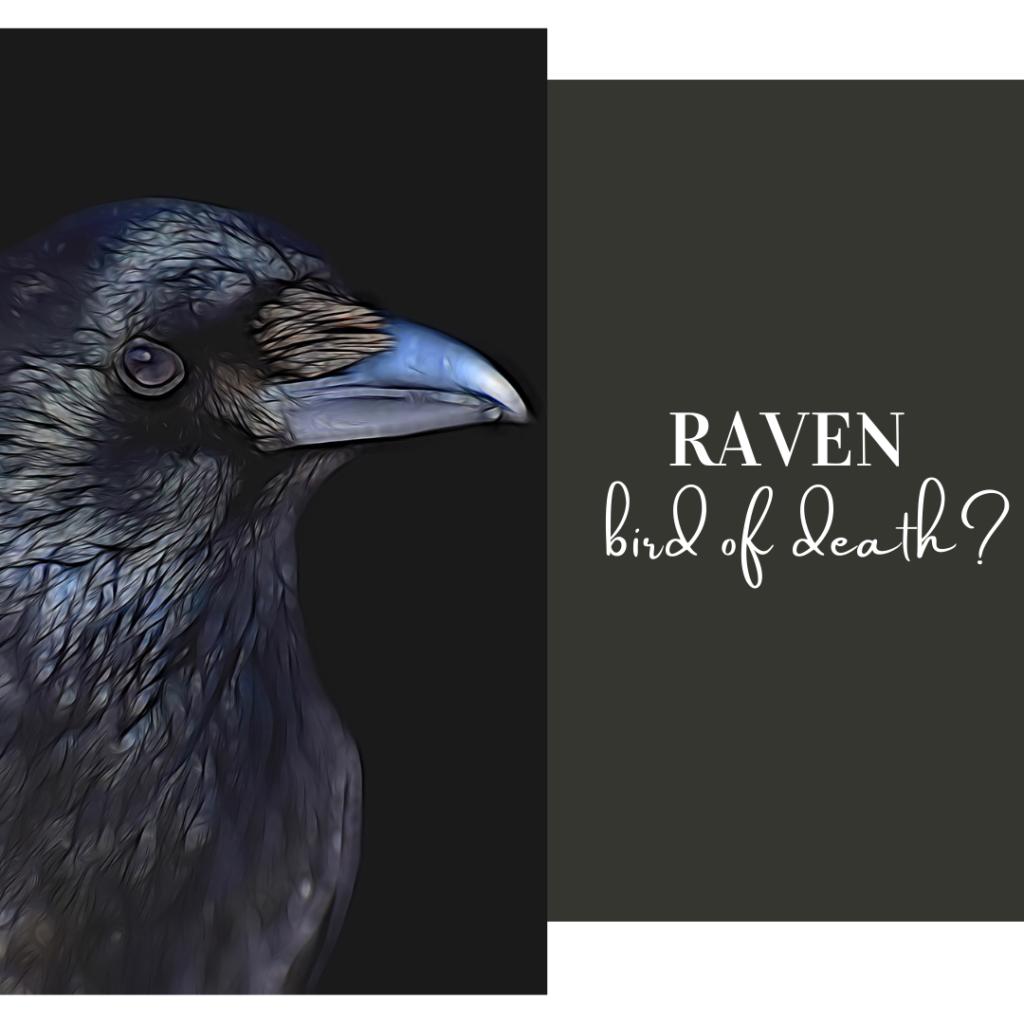 raven bird of death