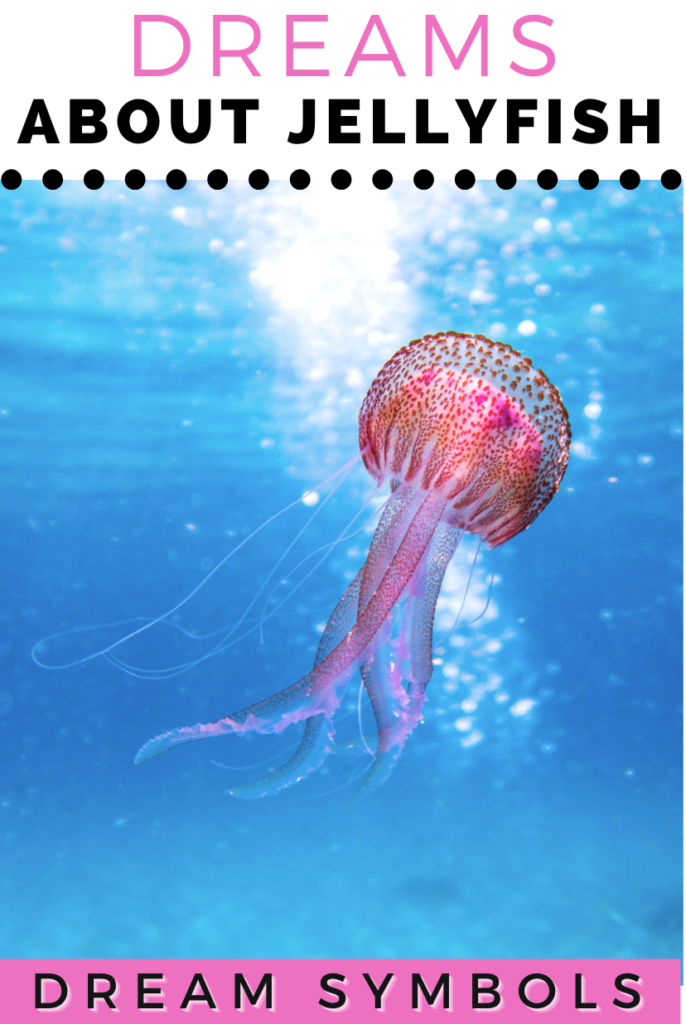 Dreaming of Jellyfish