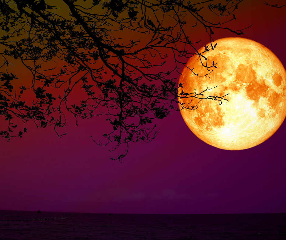 yellow full moon